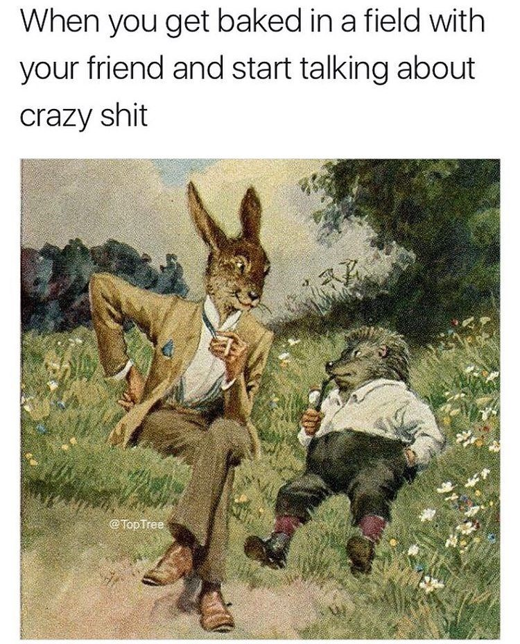 Tuesday Meme about getting high with a friend with illustration of animals in clothes conversing in a field