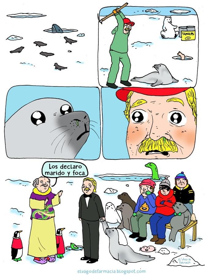 cuando el cazador no puede matar la foca que caza