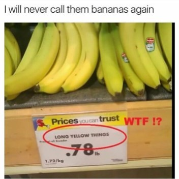 """Funny meme using photo of bananas in which they are incorrectly referred to as """"long yellow things."""""""
