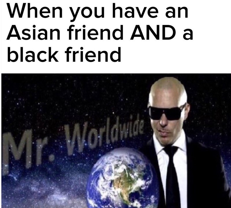 Funny meme featuring an image of Pitbull next to his name Mr. Worldwide - text is saying that you're Mr. Worldwide when you have a black friend and an asian friend.