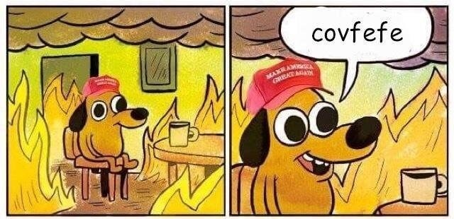 """this is fine"" meme of a dog wearing a MAGA hat saying covfefe while sitting in a burning house"