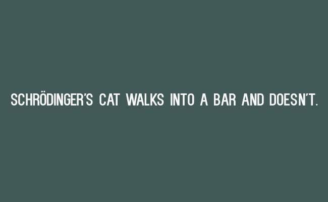 Text - SCHRÖDINGER'S CAT WALKS INTO A BAR AND DOESN'T