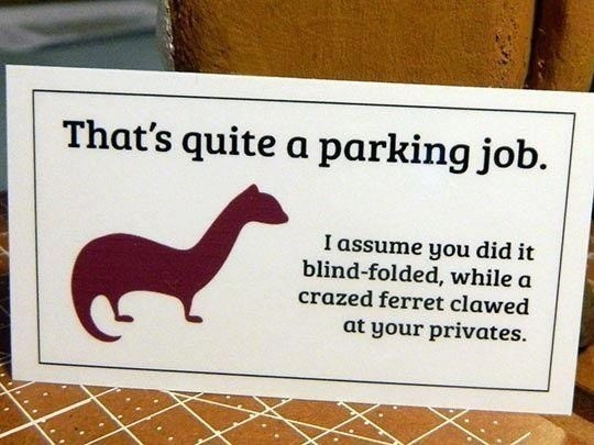 Mustelidae - That's quite a parking job. I assume you did it blind-folded, while a crazed ferret clawed at your privates.