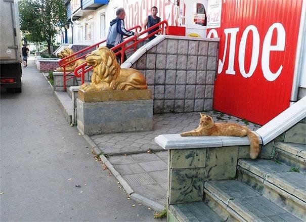 life imitates art - Sidewalk - 9-22 Toe
