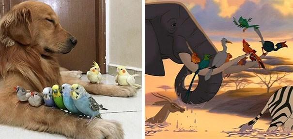 life imitates art - Cartoon