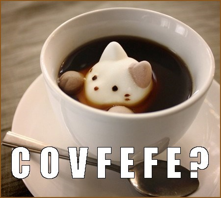 cat shaped marshmallow with a caption asking COVFEFE?