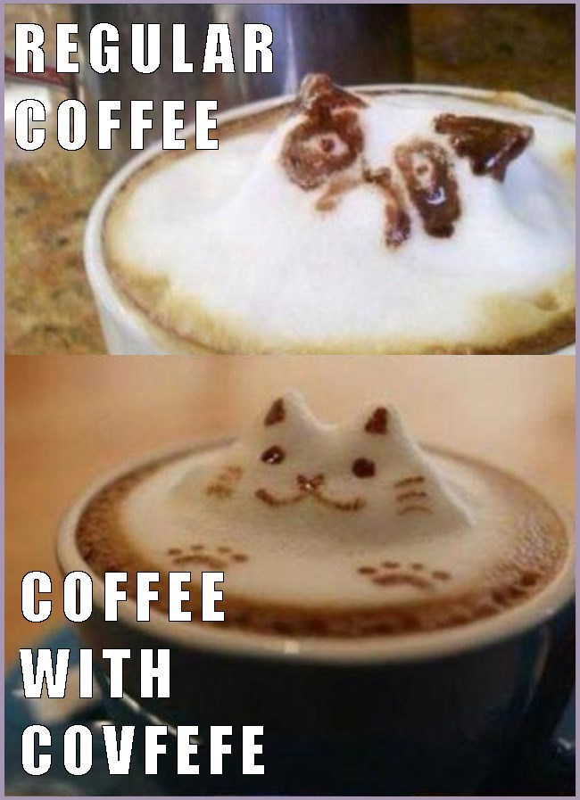 Regular Coffee as Grumpy Cat and Coffee with Covfefe as perky cat