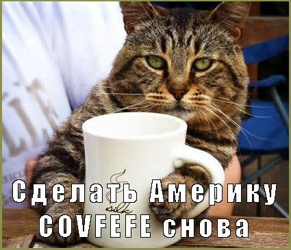 Russian text meme of a cat drinking covfefe again