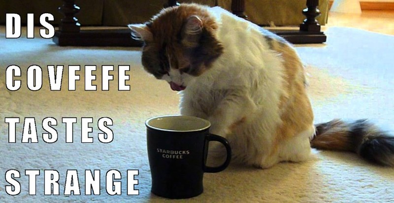 Kitty meme about a complaint of the quality of Covfefe