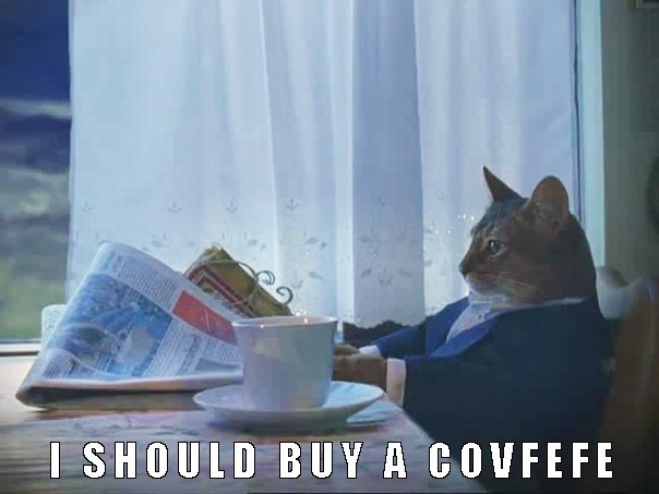 Rich cat meme forgets about the boat and instead considers buying Covfefe.