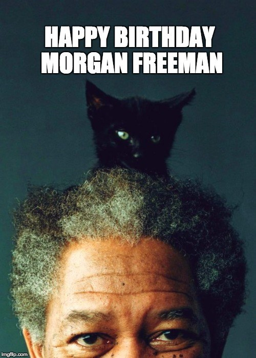 A picture of Morgan Freeman and a cat on its head.