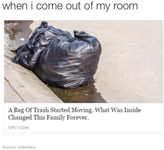 Text - when i come out of my room A Bag Of Trash Started Moving. What Was Inside Changed This Family Forever. DIPLY.COM Source: sidechica