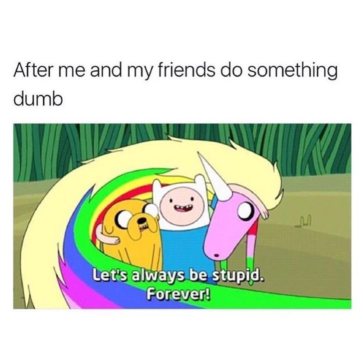 Meme about being stupid with your friends.