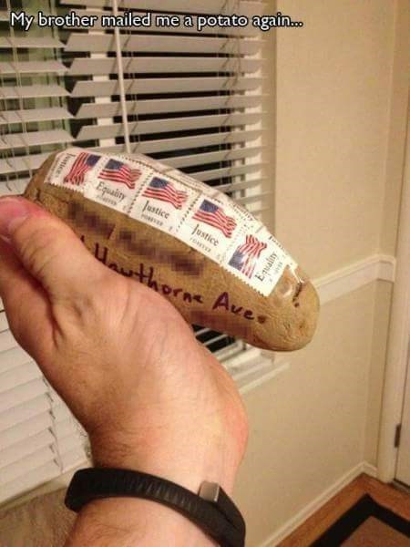 Footwear - My brother mailed me a potato again... Equaity Justice Justice ro therne Ave Eqality