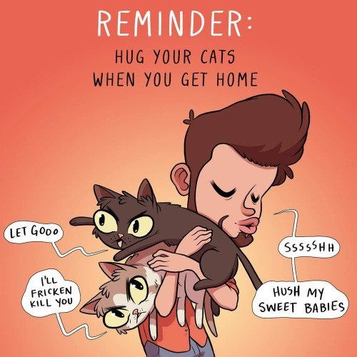 Cartoon of owner trying to hug his cat who is not that into it.
