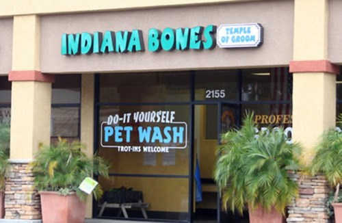 funny business names - Property - TEAPLE OF GROOM 2155 PROFE 00-1T YOURSELE PET WASH TROT-INS WELCOME
