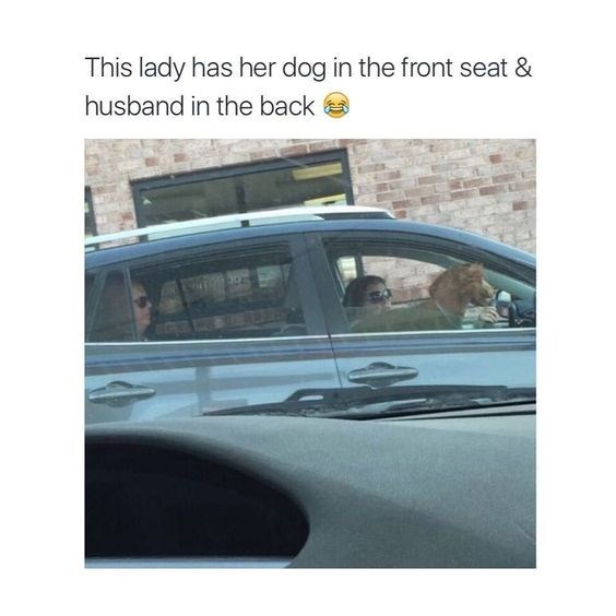 Vehicle - This lady has her dog in the front seat & husband in the back