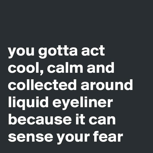 Meme from Boldmatic about how liquid eyeliner can sense fear.