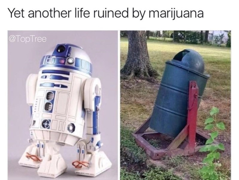Funny meme of r2D2 from Star Wars next to a trash can that looks like him, saying that it's another life ruined by marijuana.