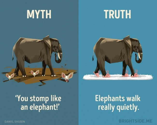 Myth of 'Stomping Like An Elephant' when in Truth, elephants walk very quietly.
