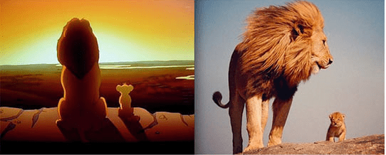 Lion King in real life - cub and lion