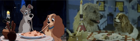Lady and the Tramp romantic dinner for two in real life.