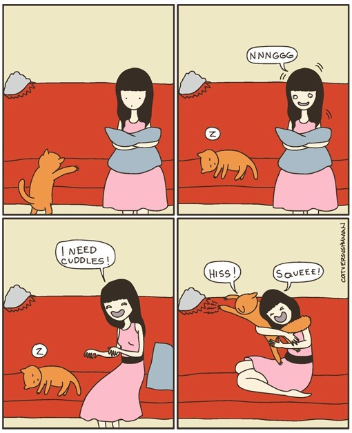 Cartoon about when you need cuddles and that cat is not in the mood.