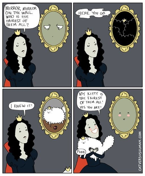 Cartoon about a mirror on the wall saying the cat is the fairest of them all.