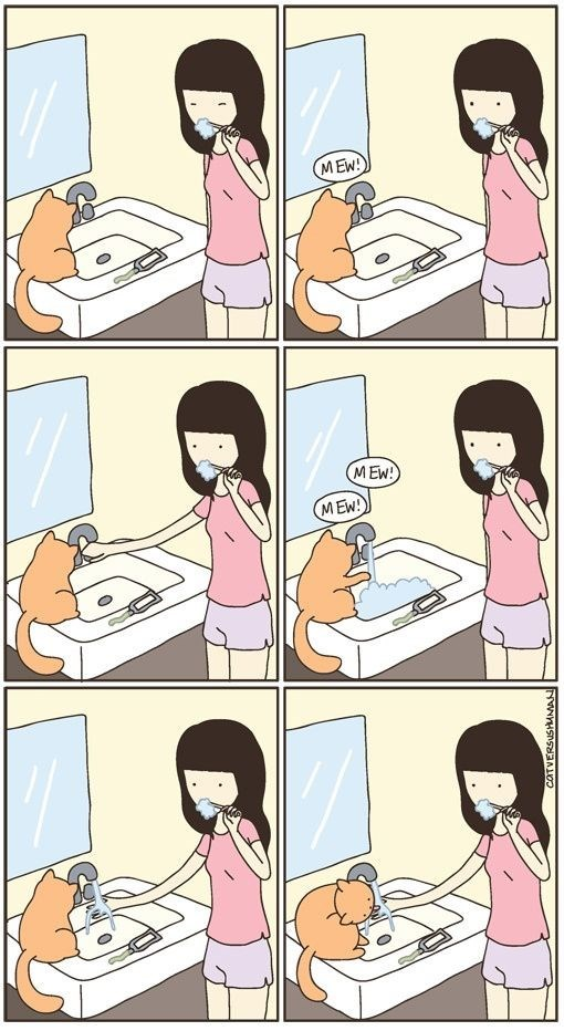 Cartoon about how a cat doesn't let you brush your teeth without making a ordeal out of it to drink water from the faucet.