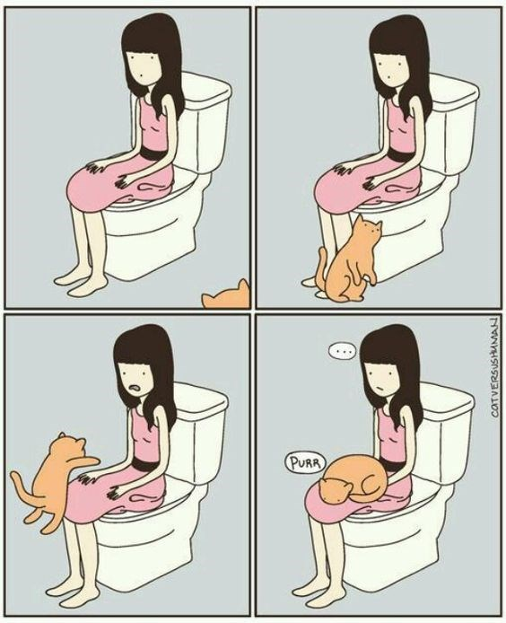 Cartoon about how a cat won't leave you alone, even when you go to the toilet.