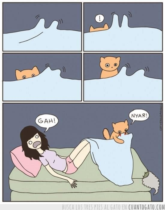 Cartoon about how cats will attack your feet when they are under a blanket.