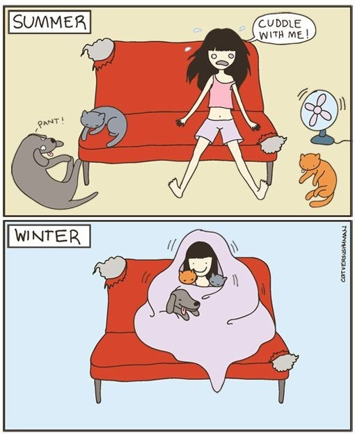 Cartoon highlighting the difference between summer and winter with your pets.