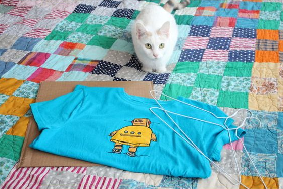 Cat next to cardboard, old t-shirt and a few metal coat hangers.