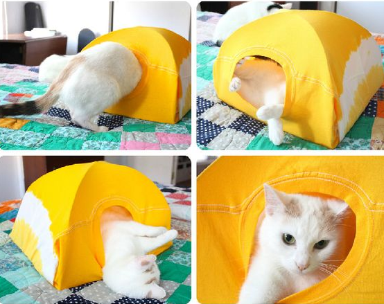 White cat happily using the new tent owner made for him.