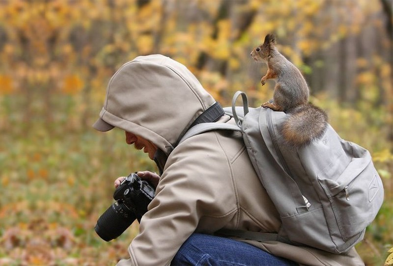 nature photographer - Leaf