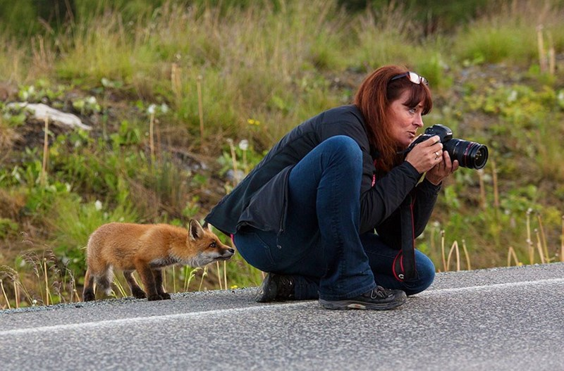 nature photographer - Wildlife