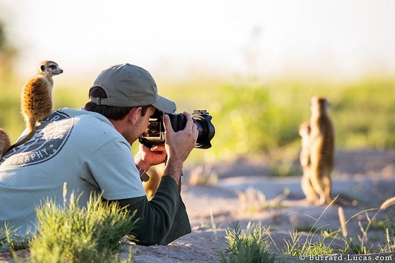 nature photographer - Photograph - 9ORAPHY Burrard-Lucas.com