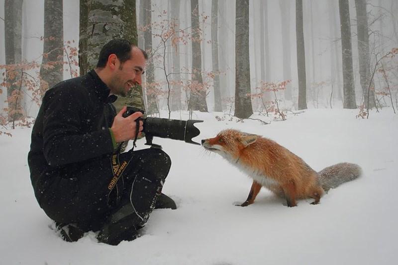 nature photographer - Snow - Nikon D80 on