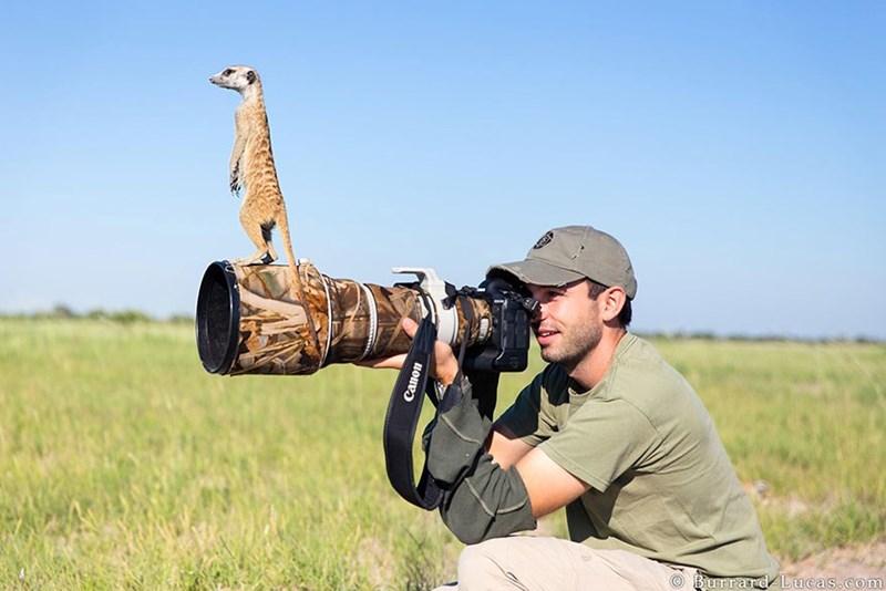 nature photographer - Grassland - Burrard Lucas.com Canon