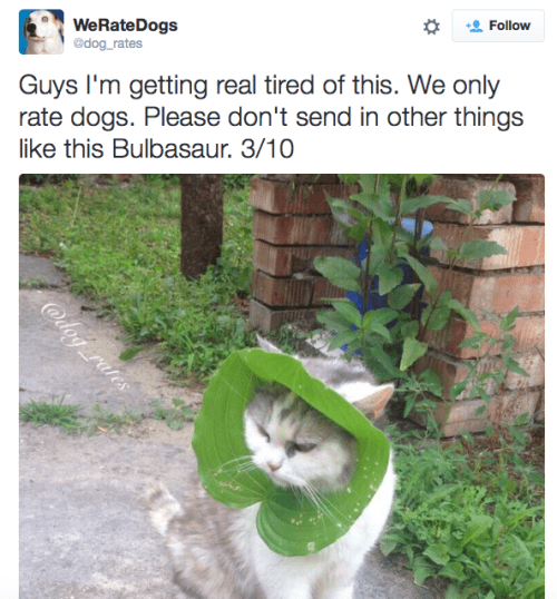 Adaptation - Follow WeRate Dogs @dog rates Guys I'm getting real tired of this. We only rate dogs. Please don't send in other things like this Bulbasaur. 3/10 @dog rates