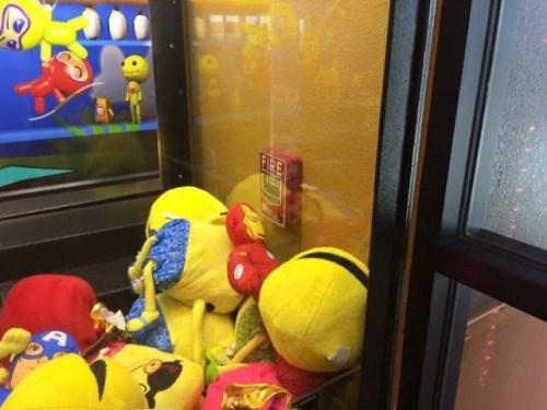 Cheezburger Image 9041987840
