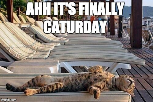 a meme of a cat laying down happy its caturday