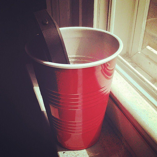 Placing an iphone in a cup to amplify the music nicely.