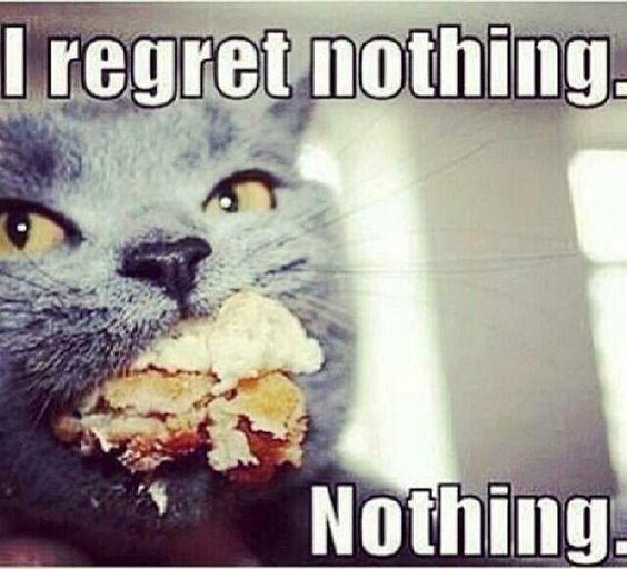 Cat - I regret nothing. Nothing