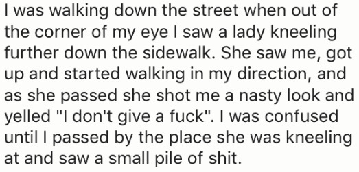 """Text - I was walking down the street when out of the corner of my eye I saw a lady kneeling further down the sidewalk. She saw me, got up and started walking in my direction, and as she passed she shot me a nasty look and yelled """"I don't give a fuck"""". I was confused until I passed by the place she was kneeling at and saw a small pile of shit."""