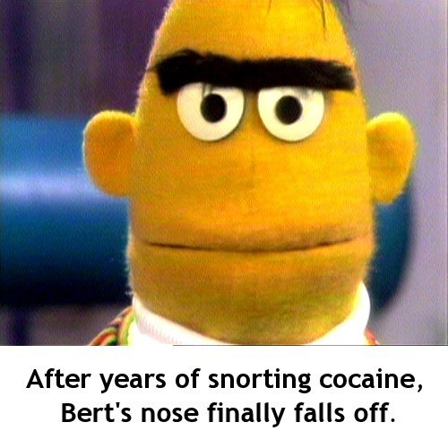 bert and ernie - Stuffed toy - After years of snorting cocaine, Bert's nose finally falls off.