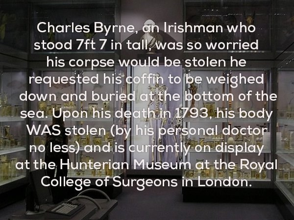 Text - Charles Byrne, an Irishman who stood 7ft 7 in tall was so worried his corpse would be stolen he requested his coffin to be weighed down and buried at the bottom of the sea. Upon his death in 1793, his body WAS stolen (by his personal doctor no less) and is currently on display at the Hunterian Museum at the Royal College of Surgeons in London.