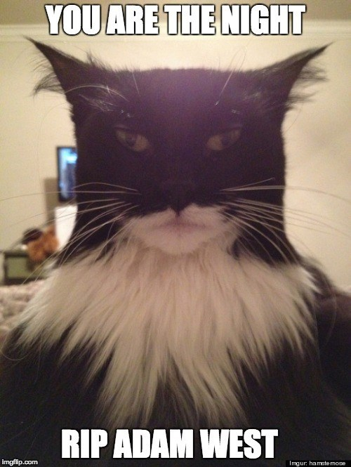 a picture of a cat that looks like batman saying rip to the series batman adam west of the 60's