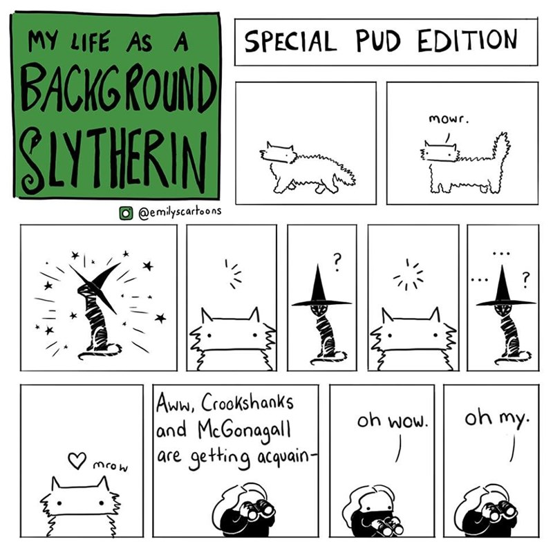Text - SPECIAL PUD EDITION MY LIFE AS A BACKGROUND SLYTHERIN Mowr @emilyscartoons ? Aww, Crookshanks and McGonagall are getting acquain- oh my. oh wow. mrow