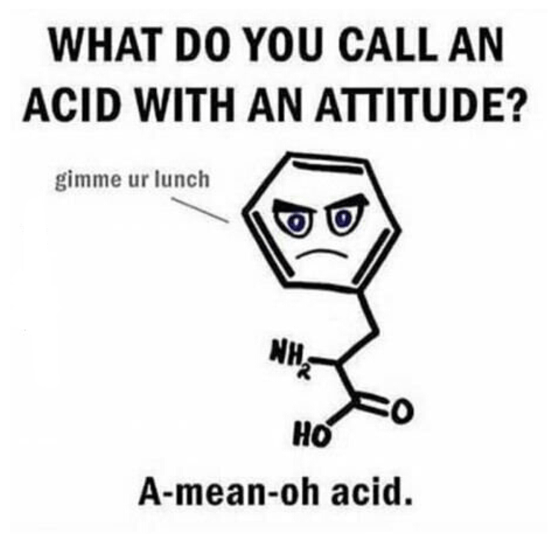 pun - Text - WHAT DO YOU CALL AN ACID WITH AN ATTITUDE? gimme ur lunch NH HO A-mean-oh acid.